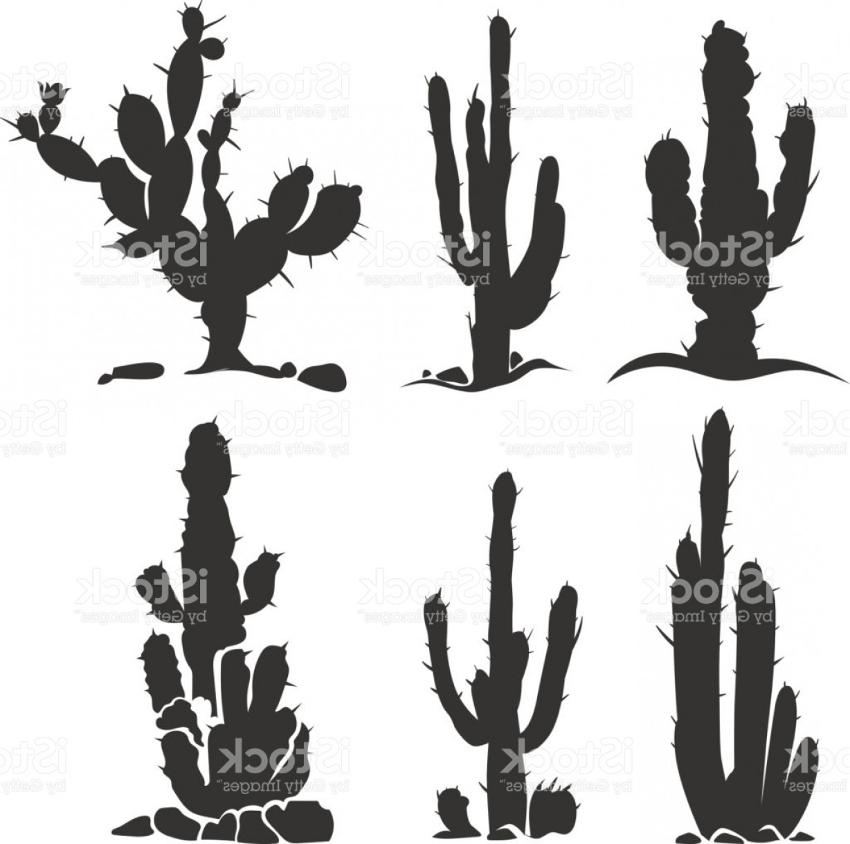1228x1219 Desert Cactus Vector Silhouette Plants Isolated On White Gm