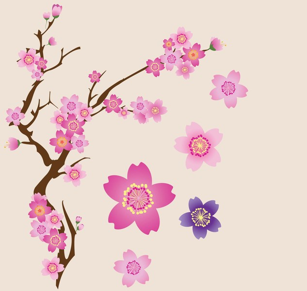 633x600 Free Download Of Cherry Blossoms Vector Vector Graphic