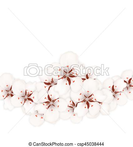 427x470 Illustration Floral Background With Sakura Or Cherry Flowers