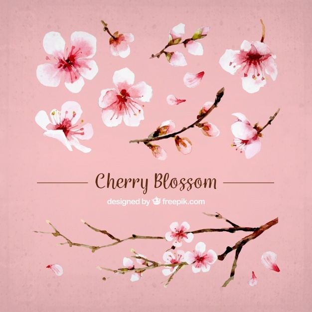 626x626 Blossom Vectors, Photos And Psd Files Free Download