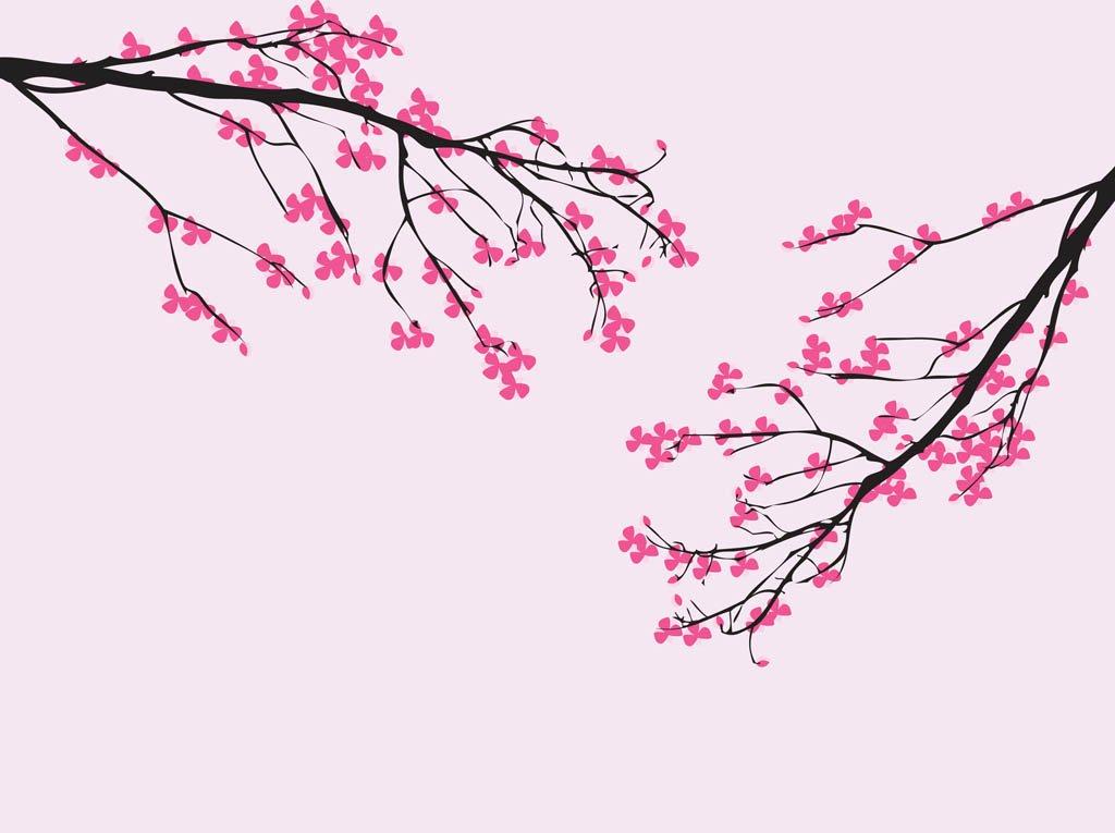 1024x765 Vector Cherry Blossom Vector Art Amp Graphics
