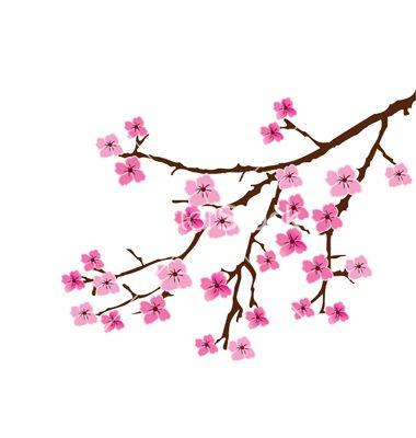 380x400 Drawn Ume Blossom Sakura Flower