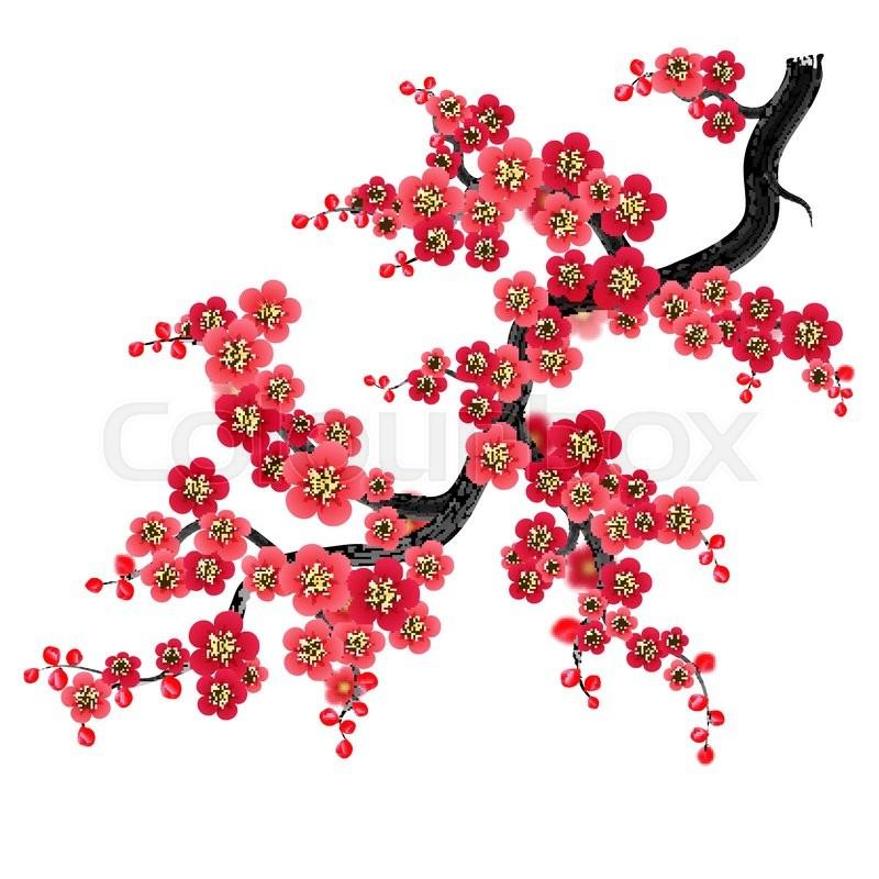 800x800 Elegant Soft Red Color Cherry Flowers Vector Sakura Background
