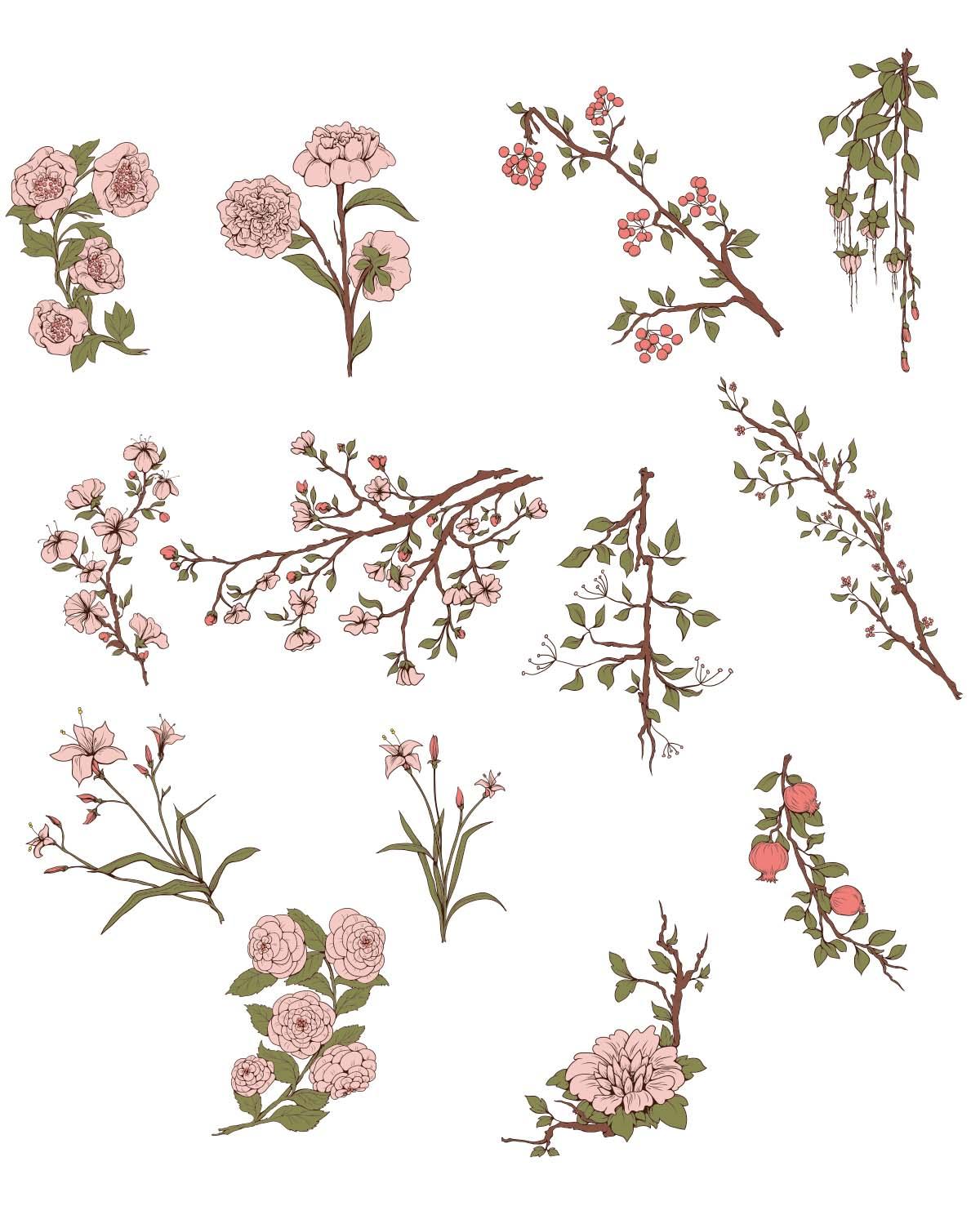 1200x1477 Japanese Sakura Flowers Set Vector Free Download