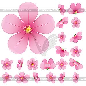 300x300 Sakura Flower