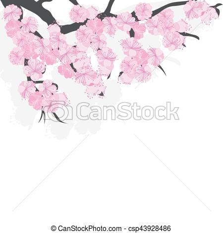 450x470 Branch Of Cherry Blossoms With Sakura Flowers.