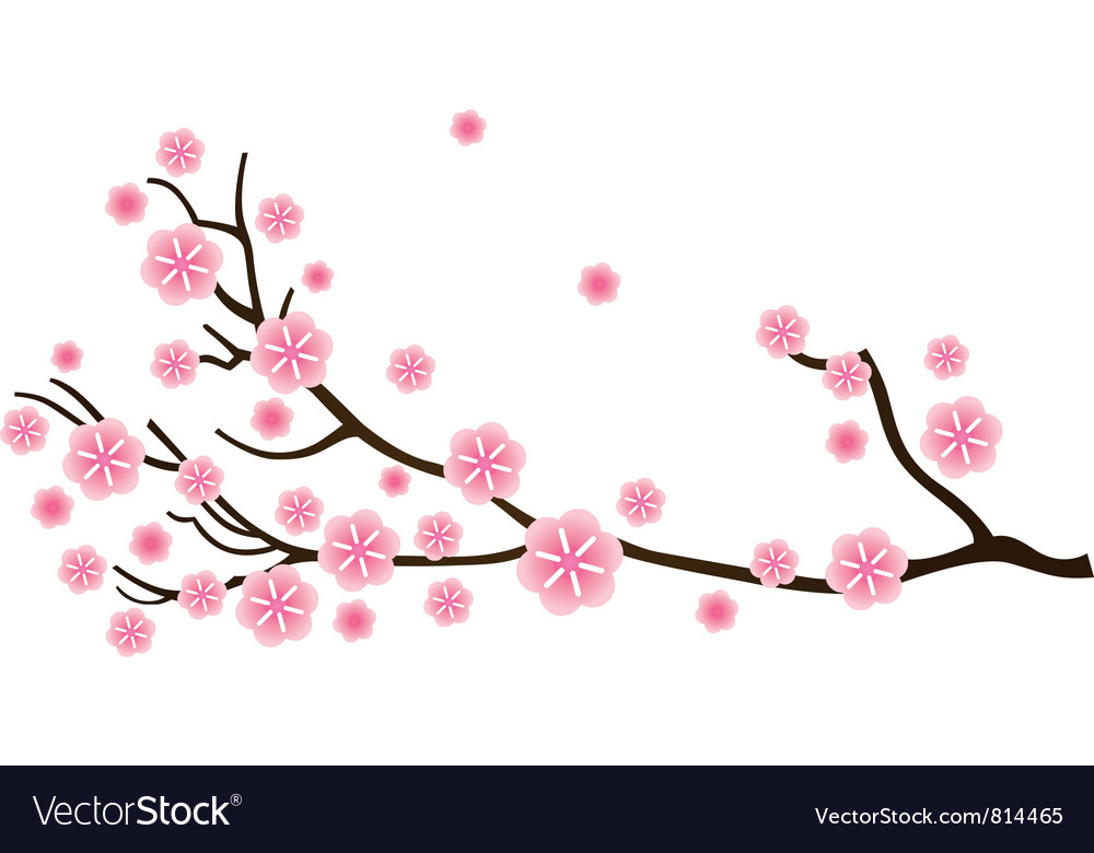 1000x780 Cherry Blossom Clipart Sakura Flower Free Collection Download