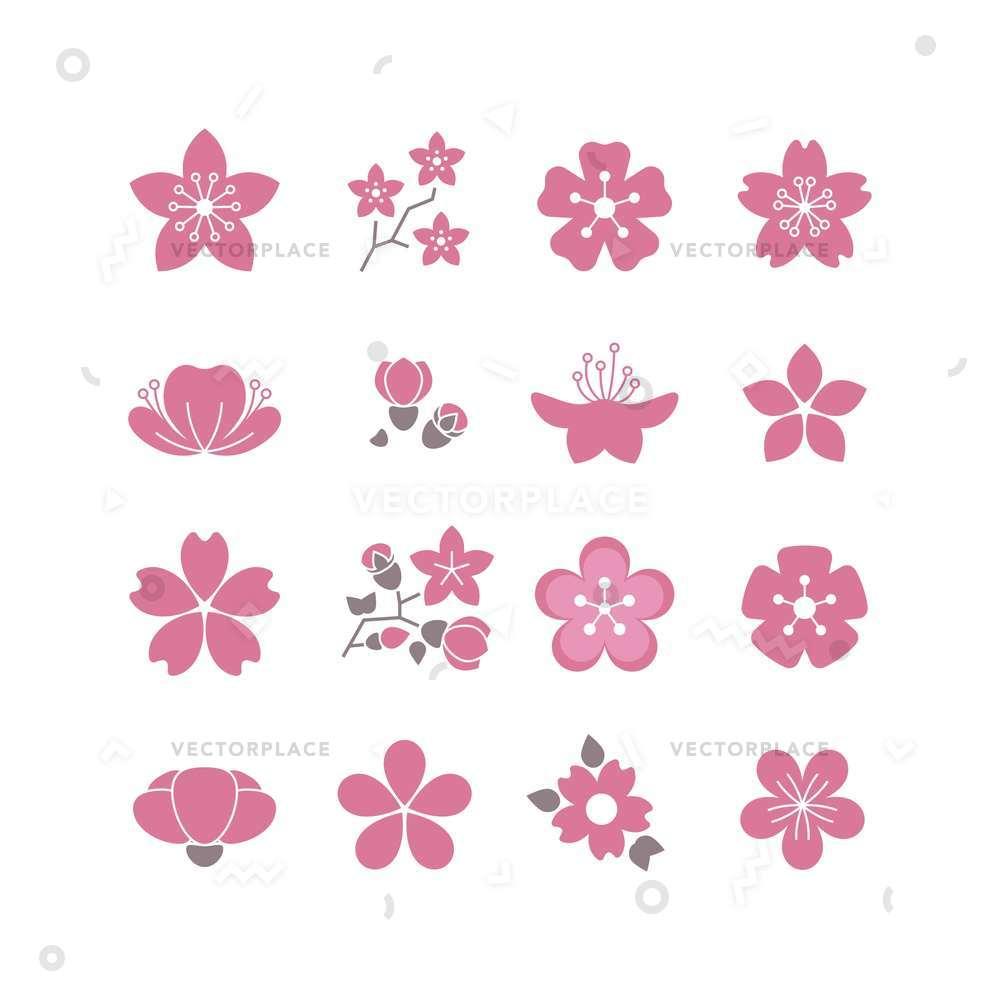 1000x1000 Cherry Pink Flower Spring Sakura Blossom Vector Illustration 53767