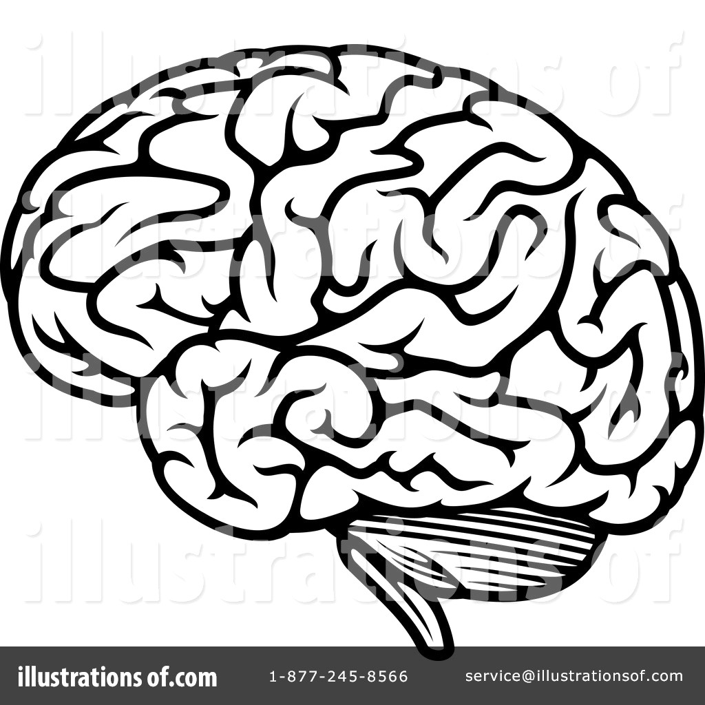 1024x1024 Royalty Free Rf Brain Clipart Illustration By Vector Tradition Sm