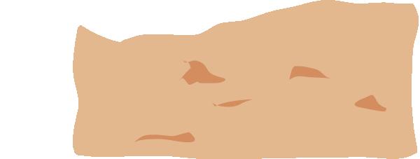 Sand Vector