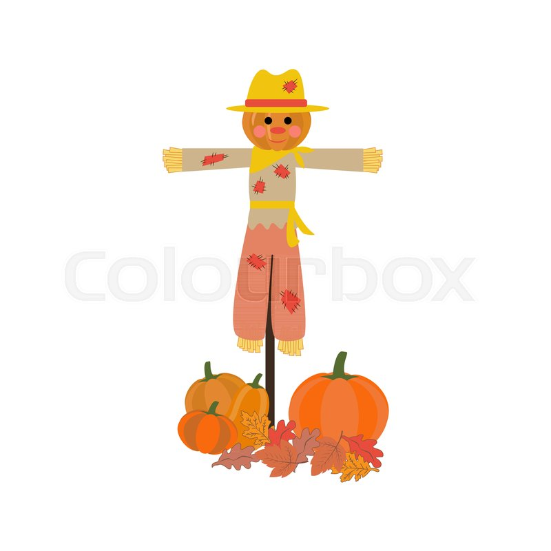 800x800 Scarecrow Vector Illustration Isolated On White Background. Vector