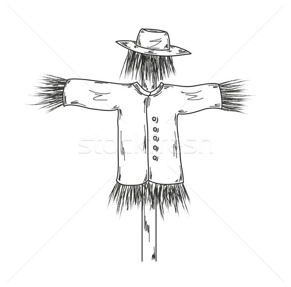 600x591 Sketch Of The Scarecrow Vector Illustration Radek (Muuraa
