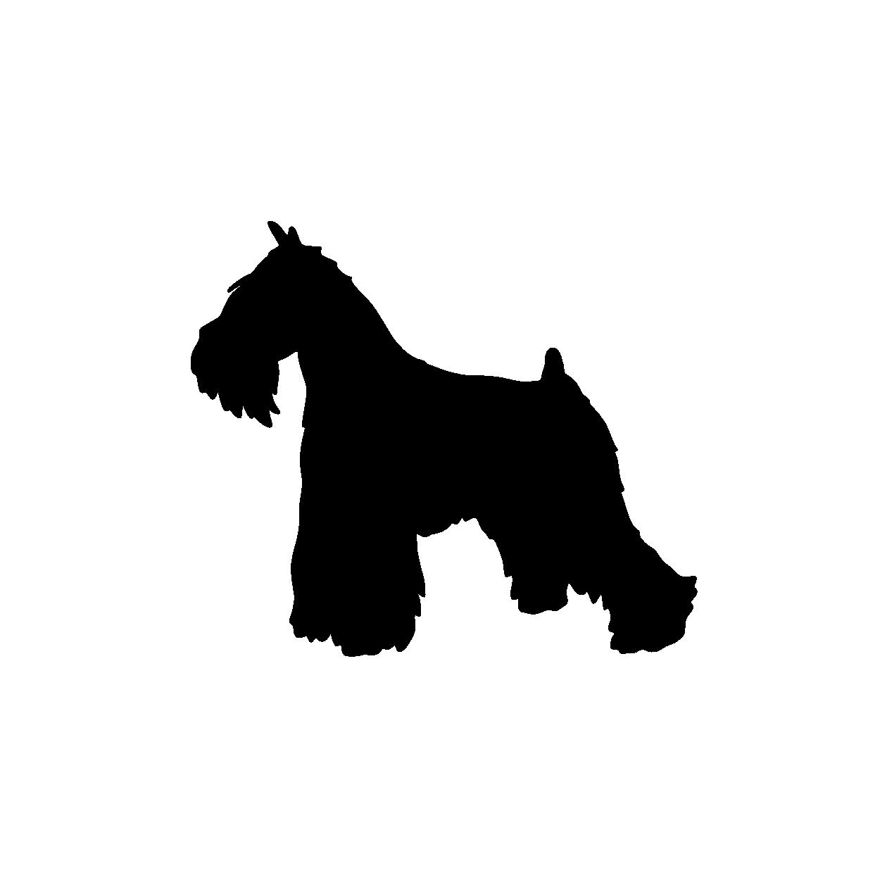 Schnauzer Vector