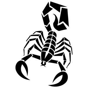 300x300 Scorpion Vector Image Vp