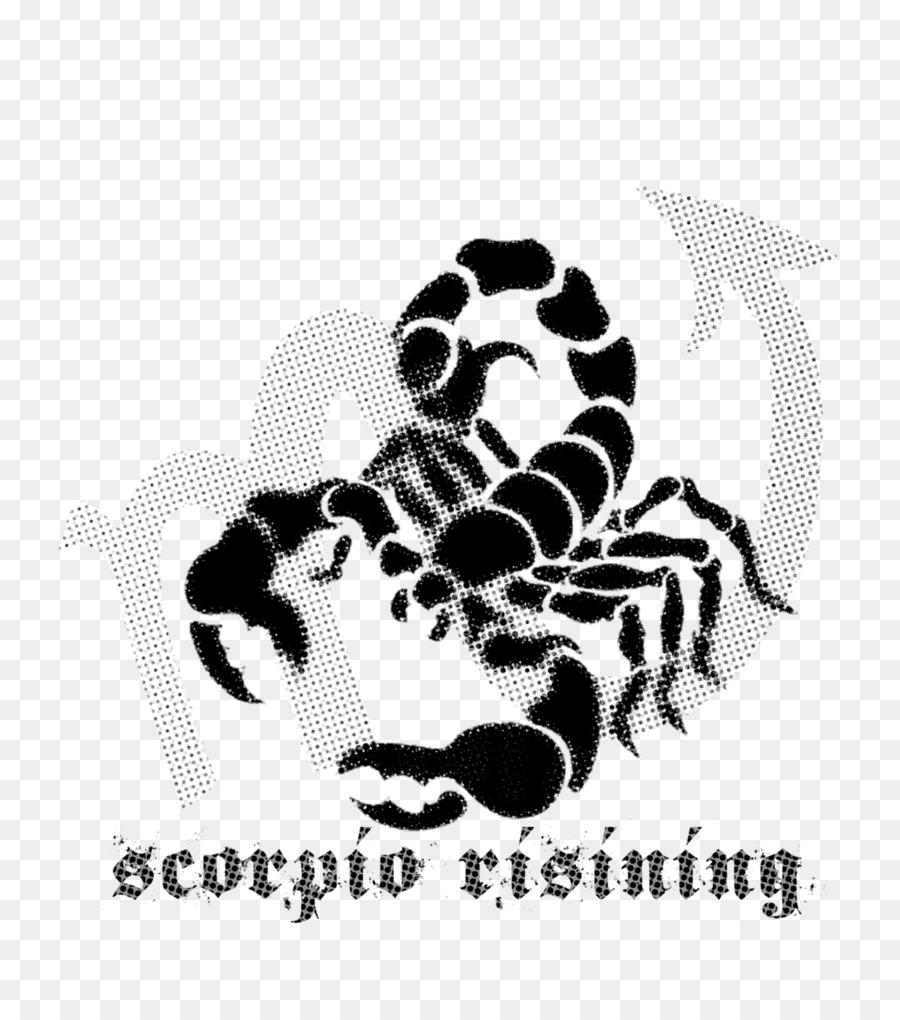 900x1020 Scorpion Vector Graphics Clip Art Image Illustration