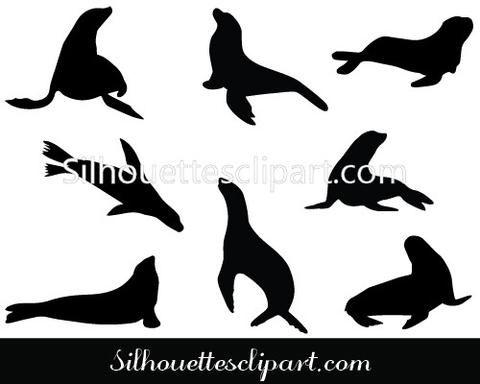 480x384 Sea Lion Silhouette Vector Plitka Iz Gipsa Lion