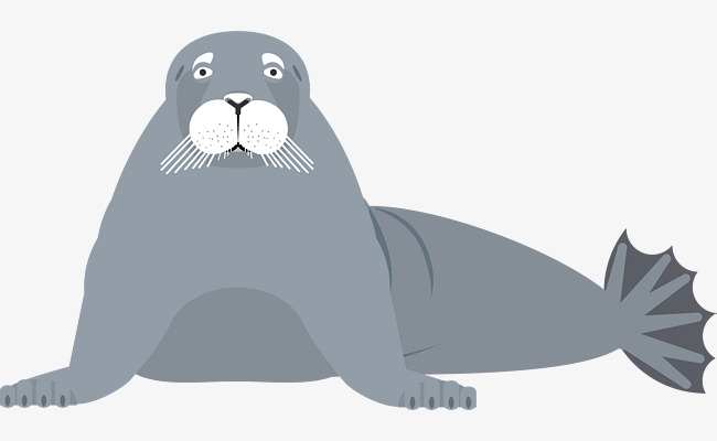 650x400 Vector Sea Lion, Sea Vector, Lion Vector, Sea Clipart Png And