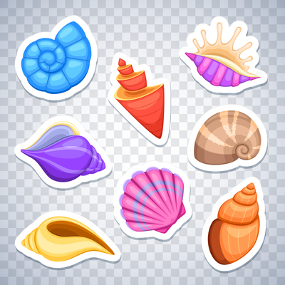 400x400 Page 1 Shells On Curated Vector Illustrations, Stock Royalty Free