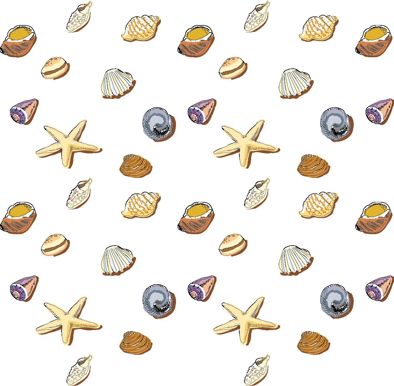 1274x1248 Seashell