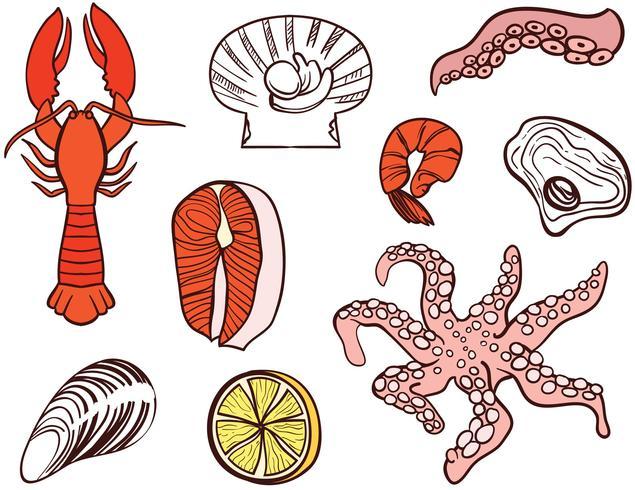 635x490 Seashell Vector Free Download Seafood Vectors Download Free Vector