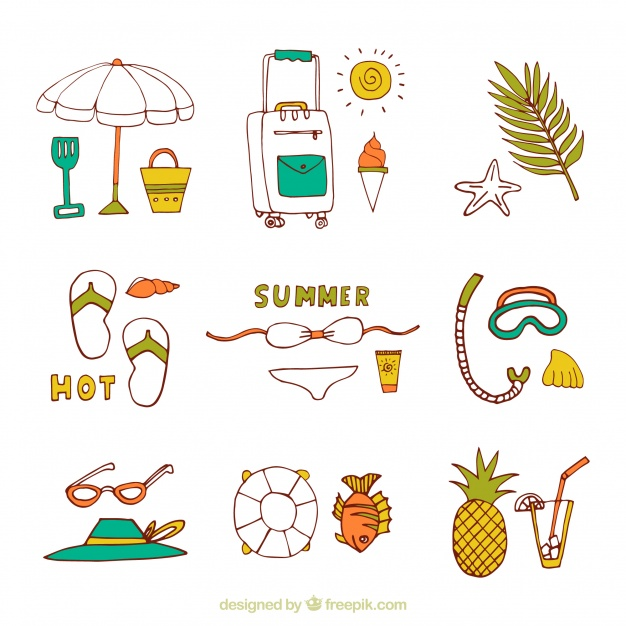 626x626 Assortment Of Summer Items In Hand Drawn Style Vector Seashell