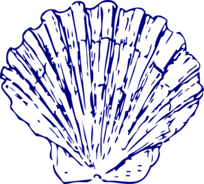 298x270 Collection Of Free Seashell Vector. Download On Ubisafe