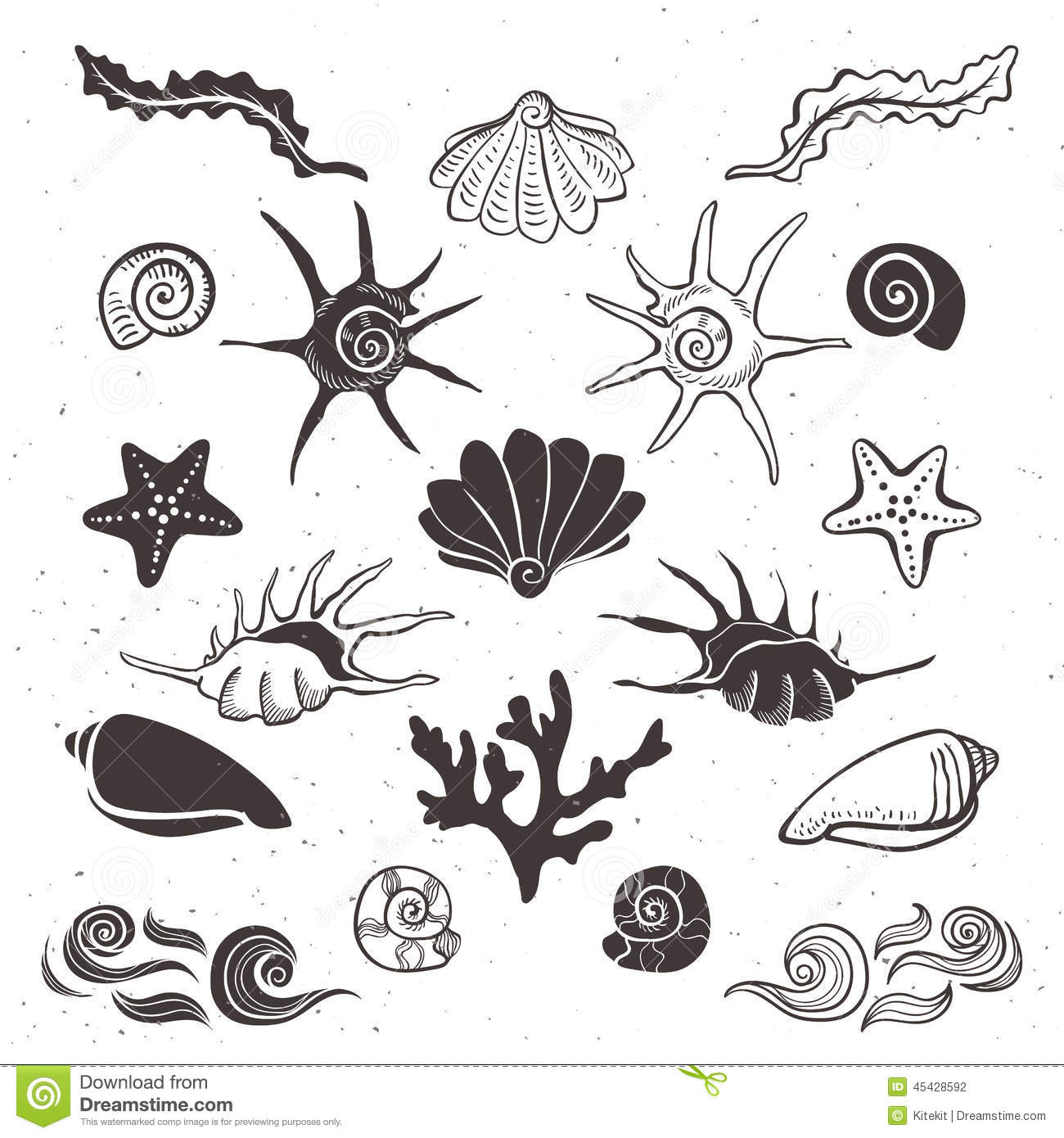 1300x1390 Drawn Starfish Seashell Free Collection Download And Share Drawn