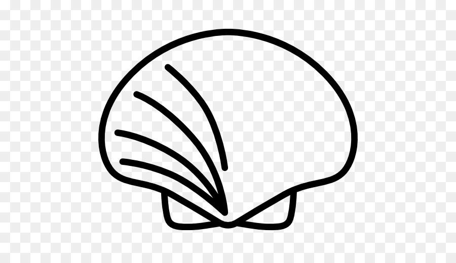 900x520 Seashell Computer Icons Molluscs Clip Art