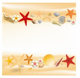 268x263 Seashell Vectors Stock For Free Download About (7) Vectors Stock