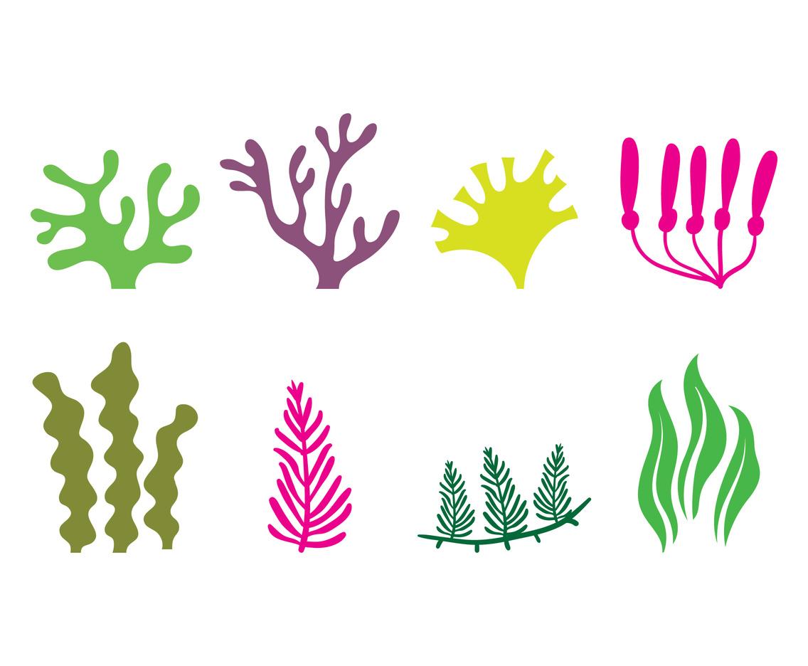 1136x936 Seaweed Icon Vector Art Amp Graphics