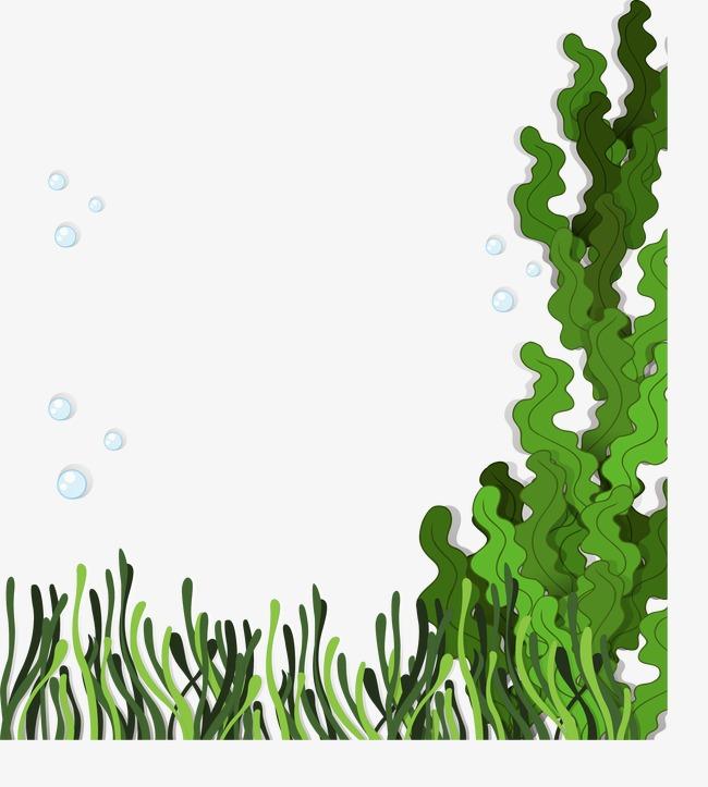 650x723 Seaweed Vector, Kelp, Aquatic, Marine Plants Png And Vector For