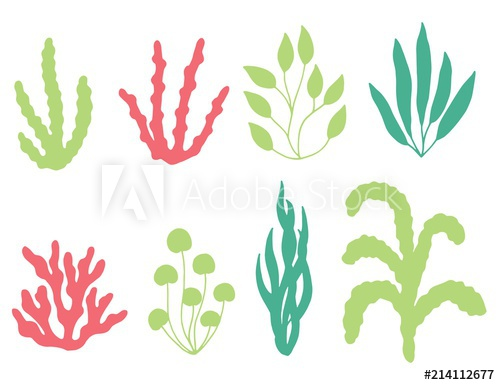 500x385 Colored Corals And Seaweed Vector Silhouette. Isolated On White