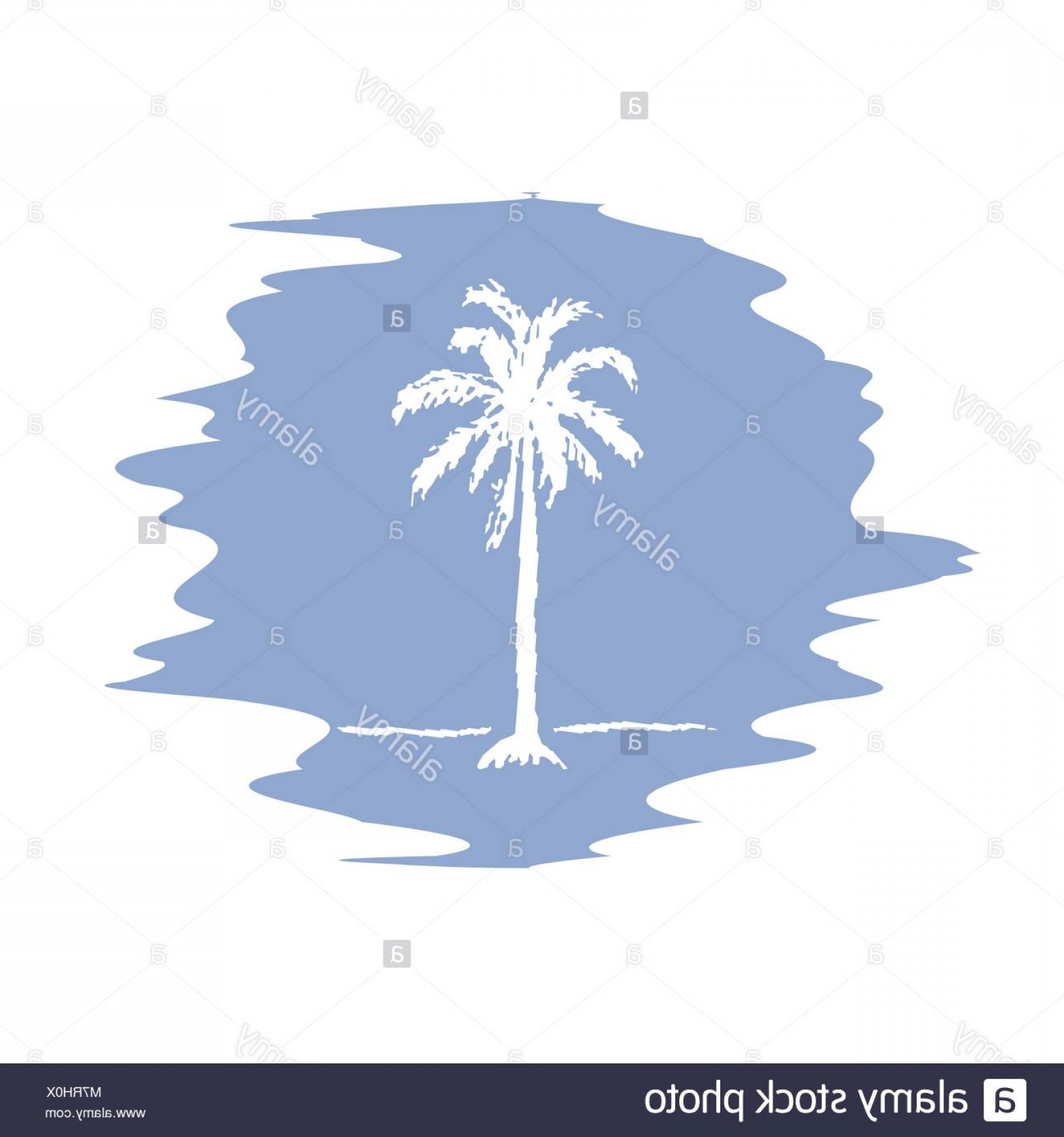 1560x1668 Stock Photo Hand Drawing Sketch Of Palm Tree Logotype Vector Palm