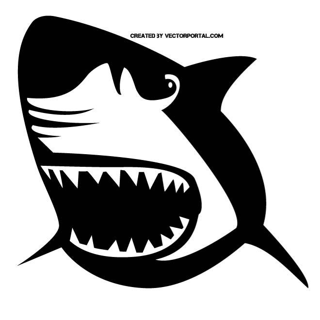 660x660 Great White Shark Vector