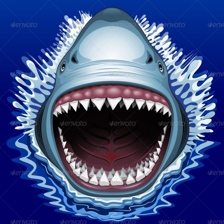 900x900 Shark Jaws Attack By Bluedarkat Graphicriver