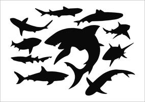 285x200 Shark Jaws Free Vector Art