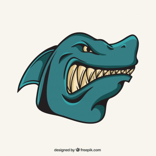 626x626 Shark Vectors, Photos And Psd Files Free Download