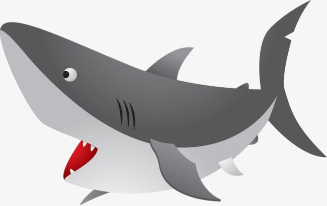 650x411 Ferocious Sea Shark Mouth, Ferocious Shark, Sea Sharks, Shark