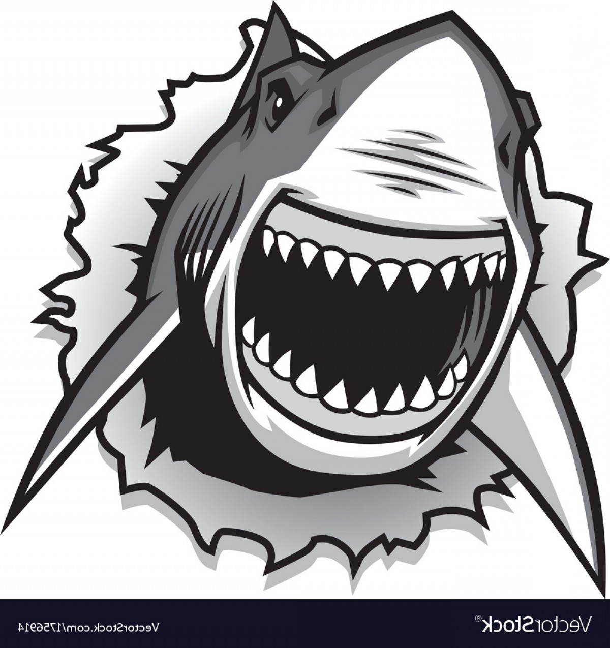 1200x1275 Great White Shark Ripping With Opened Mouth Vector Geekchicpro