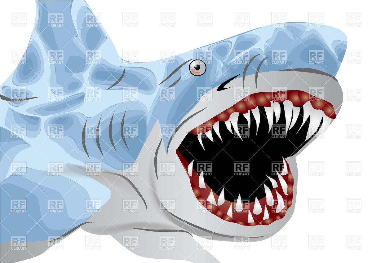 1200x849 Great White Shark With Open Mouth Vector Image Vector Artwork Of
