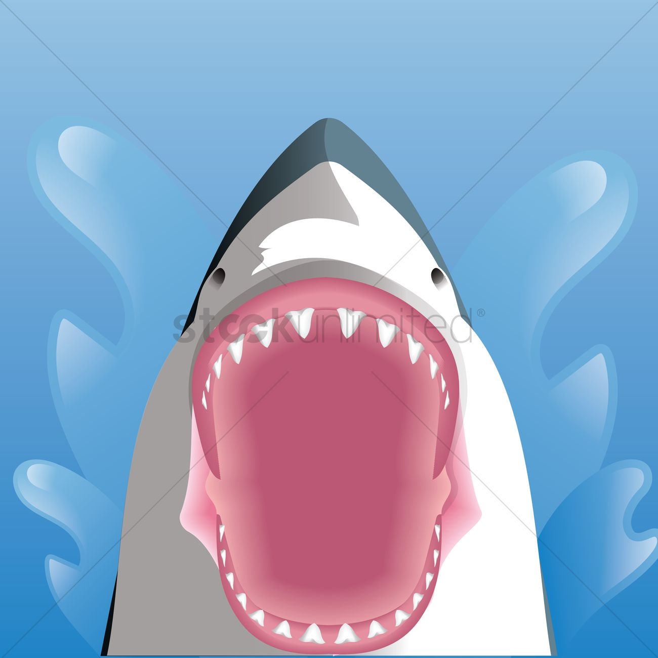 1300x1300 Shark With Opened Mouth Vector Image