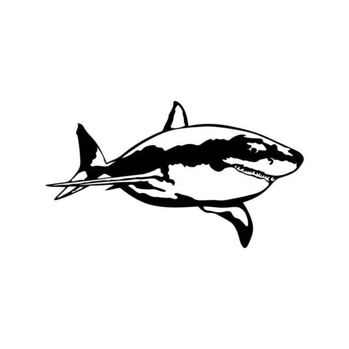 690x690 Great White Shark Graphics Design Svg Dxf Eps By Vectordesign