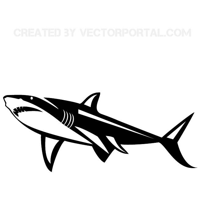 660x660 Shark Vector Graphics