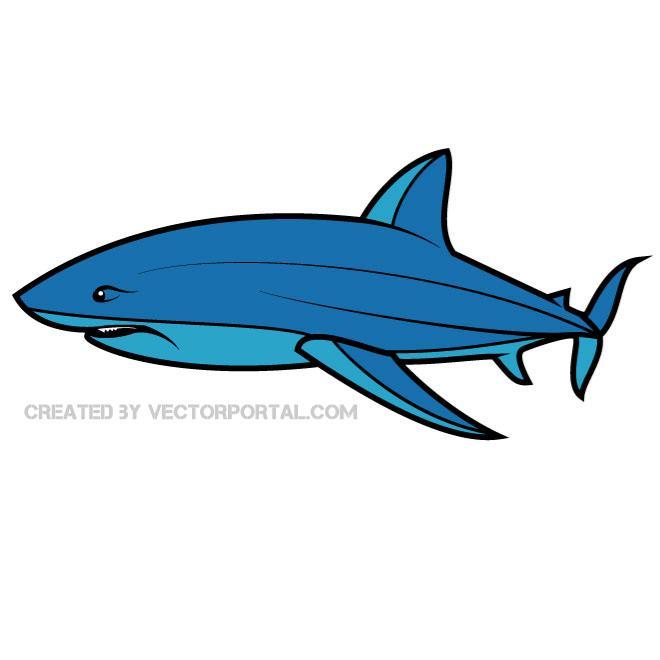 660x660 Shark Free Vector 123freevectors