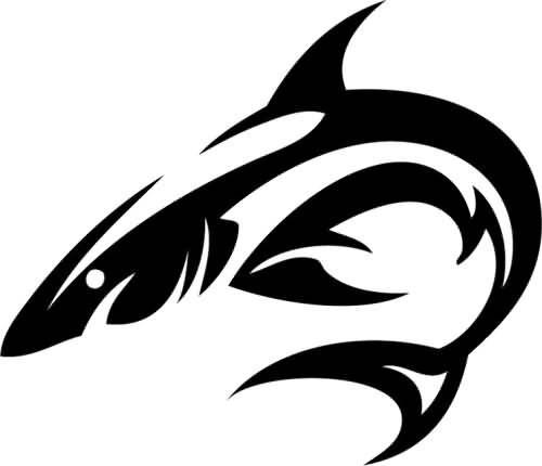 500x430 Beautiful Shark Tattoo Vector Art