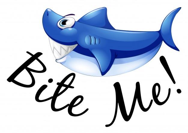 626x444 Shark Vectors, Photos And Psd Files Free Download