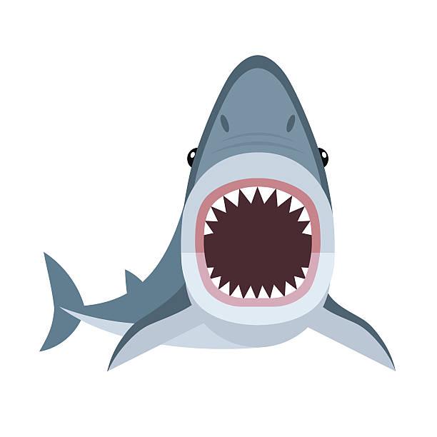612x612 Shark Clipart, Suggestions For Shark Clipart, Download Shark Clipart