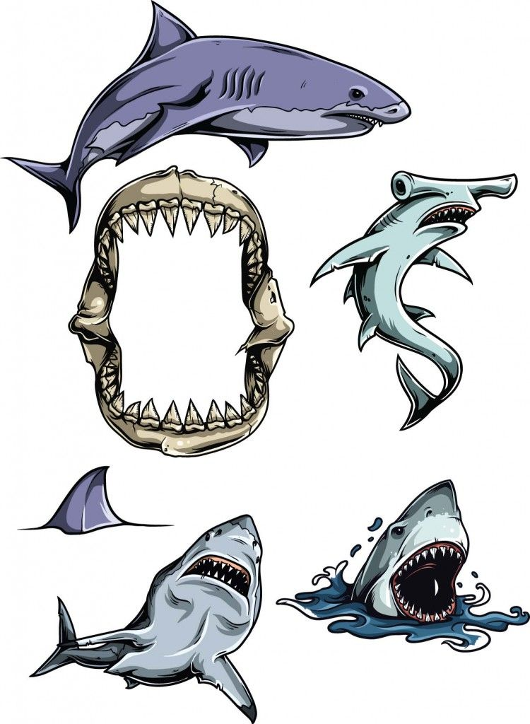 750x1024 Sharks Vector Clipart Set Free Vectors,cards And Illustrations