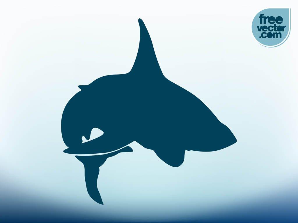 1024x765 Vector Shark Vector Art Amp Graphics
