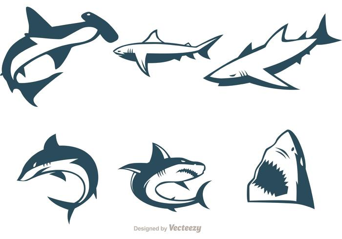700x490 Collection Of Shark Vectors